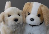 Puzzles des petits chiens pour enfants