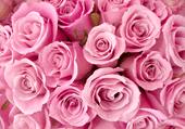 Puzzles des roses d'un mariage