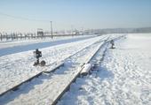 Puzzle Puzzle neige et hiver