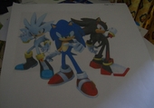 les guerrier ,sonic,shadow,silver