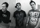 Puzzles Blink 182