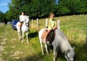 Jeu puzzle les chevaux j'adore