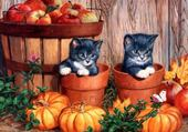 Puzzle Chatons curieux...