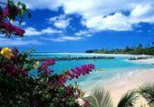 Puzzle Jeux de puzzle : Dans les îles...