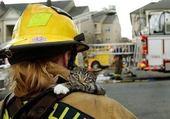 Puzzle en ligne vive les pompiers