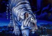 Puzzle Jeu puzzle Tiger