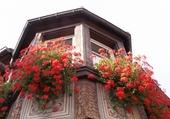 Puzzle ANDLAU maison  fleurie