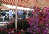 Jeu puzzle Nice le marché aux fleurs