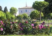 Jeu puzzle monastère Nice cimiez