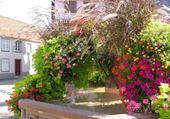 Puzzle fontaine fleurie