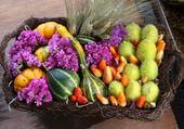 Puzzle corbeille de fruits
