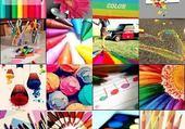 Puzzle de toute les couleurs