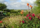 jardin robert