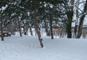 Puzzle gratuit Condrieu sous la neige..2009/2010