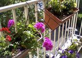 Jeu puzzle balcon de tante LUCE