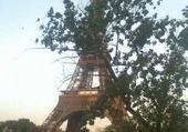 Puzzle Paris 2010