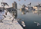 Jeux de puzzle : La Rochelle sous la neige