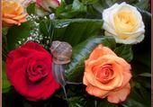 Jeux de puzzle : quel beau bouquet