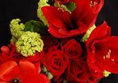 Jeu puzzle zoom sur des fleurs
