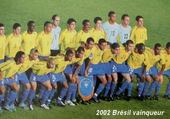 Jeux de puzzle : 2002 Brésil vainqueur