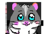 Jeux de puzzle : le super hamster