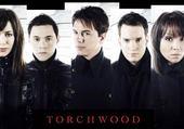 Puzzle Torchwood