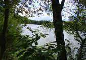 Puzzle vue sur étang