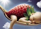 Puzzle fraise de bahia