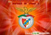 Puzzle benfica