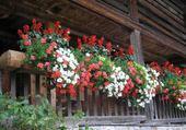 Puzzle gratuit chalet fleuri à Menthon en Savoie