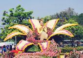 Taquin Fête des fleurs en Thaïlande