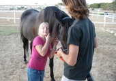 Puzzle Puzzle de mon cheval