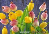 Puzzle bébés fleurs