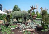 Puzzle Mosaîculture Mtl Caribou
