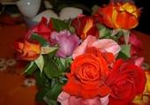 Jeux de puzzle : fleurs