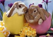 Puzzle en ligne lapins de pâques