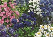 Puzzle blue perennial