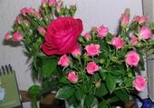 Jeu puzzle Bouquet de fleurs