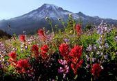 Puzzle gratuit paysage de montagne