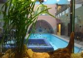 Taquin Piscine et aquarium