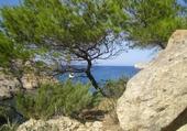 Puzzle en ligne Ibiza