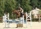 Taquin Moi a cheval