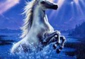 Puzzle en ligne mon cheval