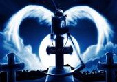 Taquin angel