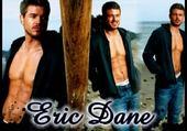 Puzzle Eric Dane