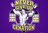 never give up cenation