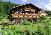 Taquin chalet