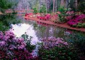Puzzle en ligne jardin fleuri