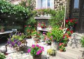 Jeu puzzle jardin fleuri