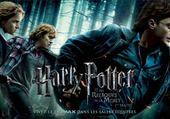 Taquin Harry Potter 7